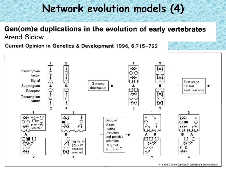 Network evolution models (4)