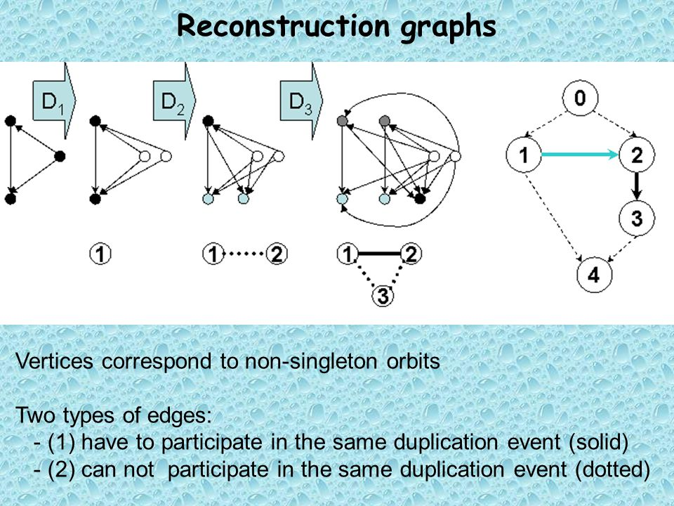 Reconstruction graphs Vertices correspond to non-singleton orbits Two types of edges: - (1) have to participate in the same duplication event (solid) - (2) can not participate in the same duplication event (dotted)