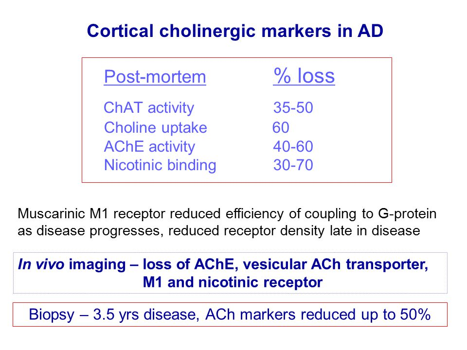 Post-mortem % loss ChAT activity 35-50 Choline uptake 60 AChE activity 40-60 Nicotinic binding 30-70 Cortical cholinergic markers in AD In vivo imaging – loss of AChE, vesicular ACh transporter, M1 and nicotinic receptor Biopsy – 3.5 yrs disease, ACh markers reduced up to 50% Muscarinic M1 receptor reduced efficiency of coupling to G-protein as disease progresses, reduced receptor density late in disease