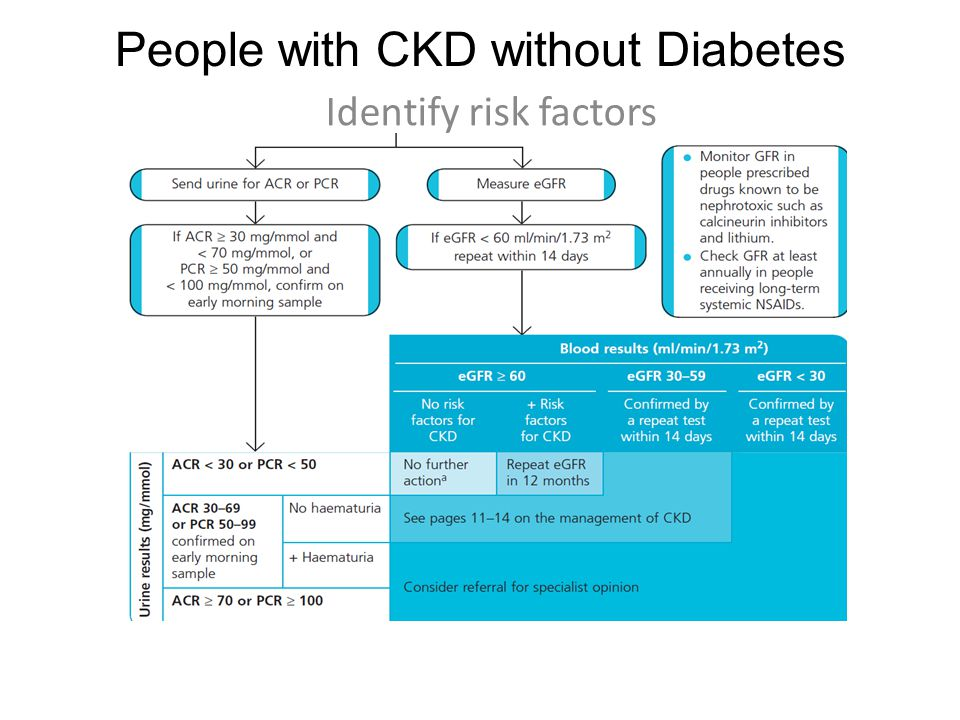 People with CKD without Diabetes Identify risk factors R