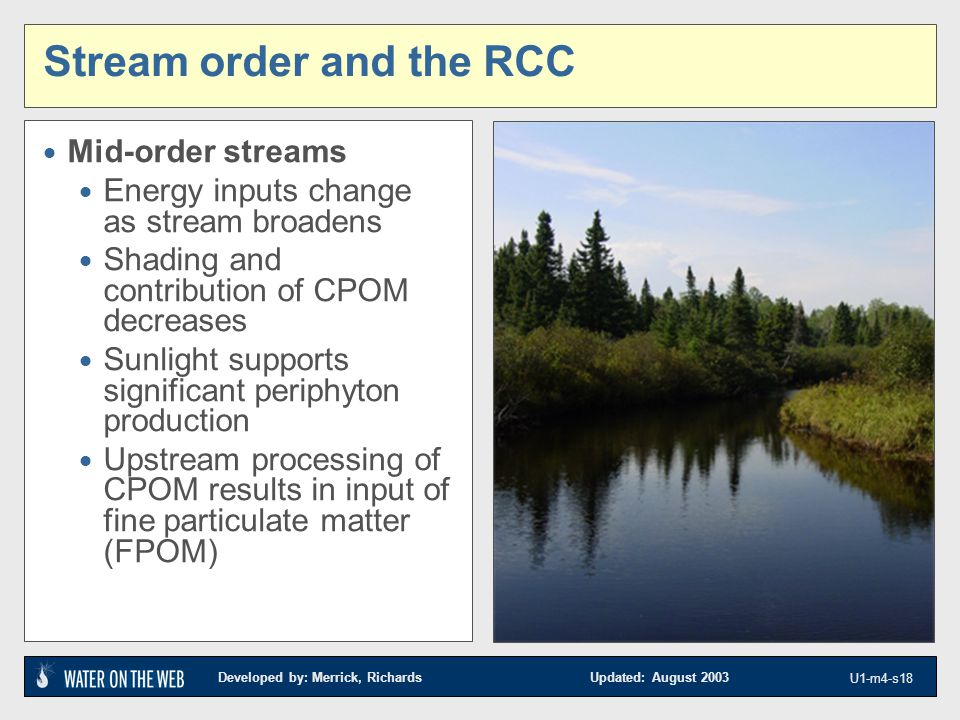 Developed by: Merrick, Richards Updated: August 2003 U1-m4-s18 Stream order and the RCC  Mid-order streams  Energy inputs change as stream broadens