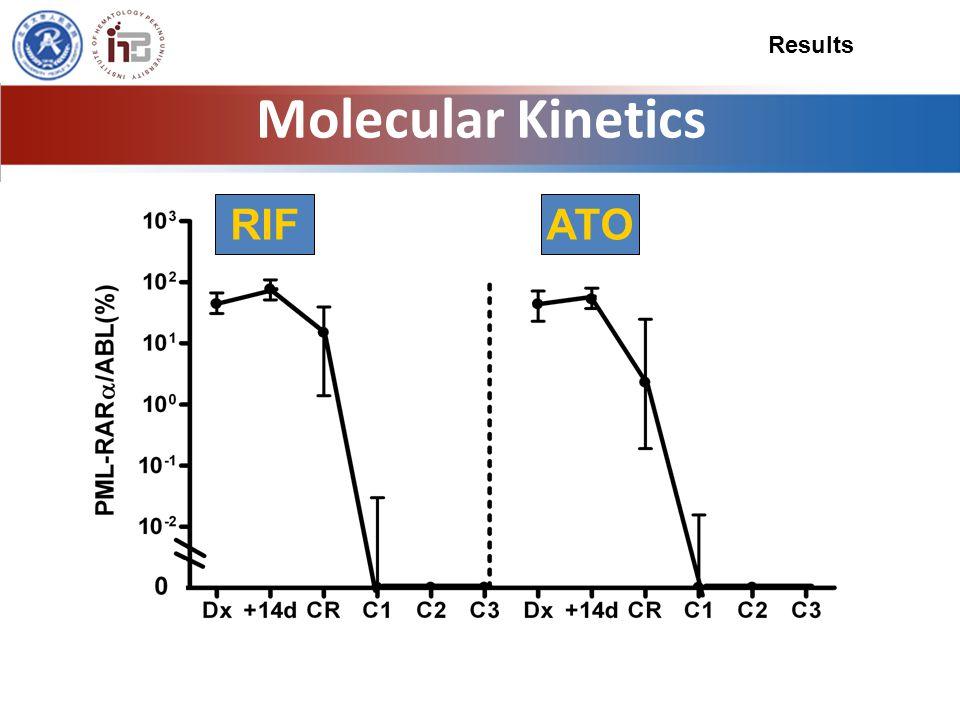 Molecular Kinetics RIFATO Results