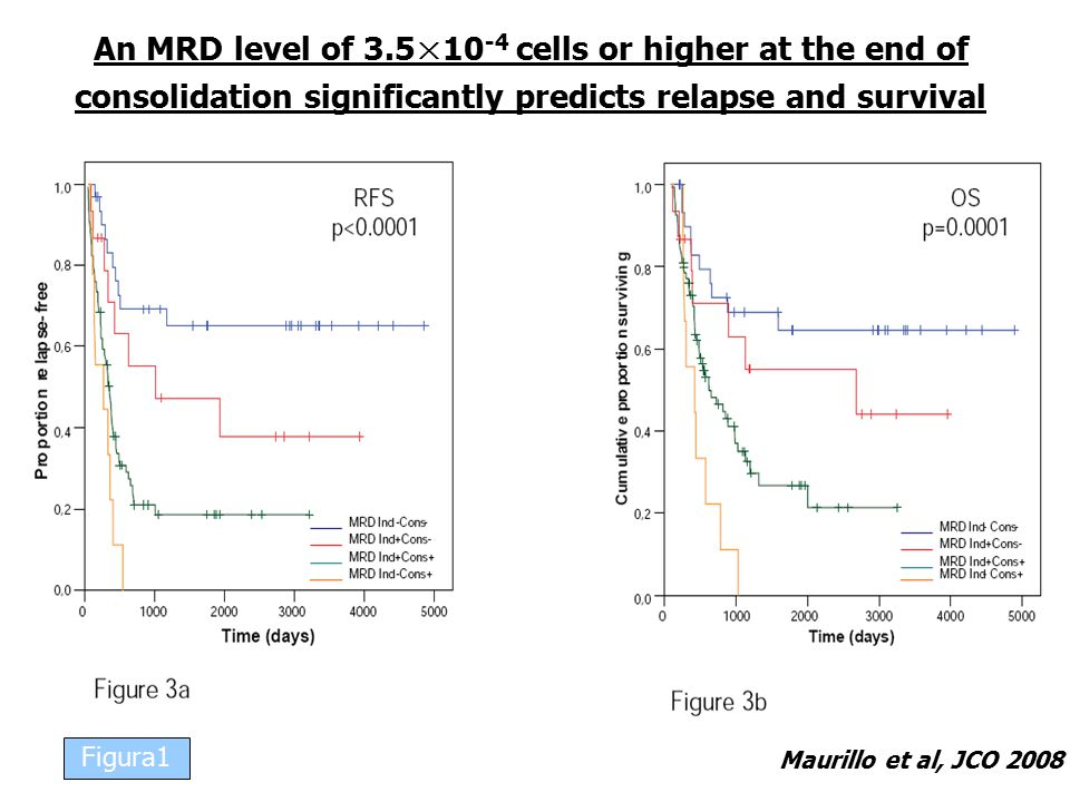 Maurillo et al, JCO 2008 An MRD level of 3.5×10 -4 cells or higher at the end of consolidation significantly predicts relapse and survival Figura1