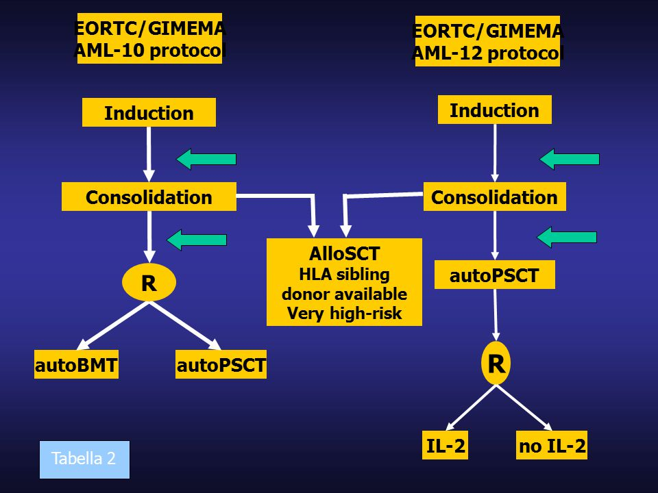 EORTC/GIMEMA AML-10 protocol Induction Consolidation autoBMTautoPSCT R EORTC/GIMEMA AML-12 protocol Induction Consolidation R autoPSCT IL-2no IL-2 AlloSCT HLA sibling donor available Very high-risk Tabella 2