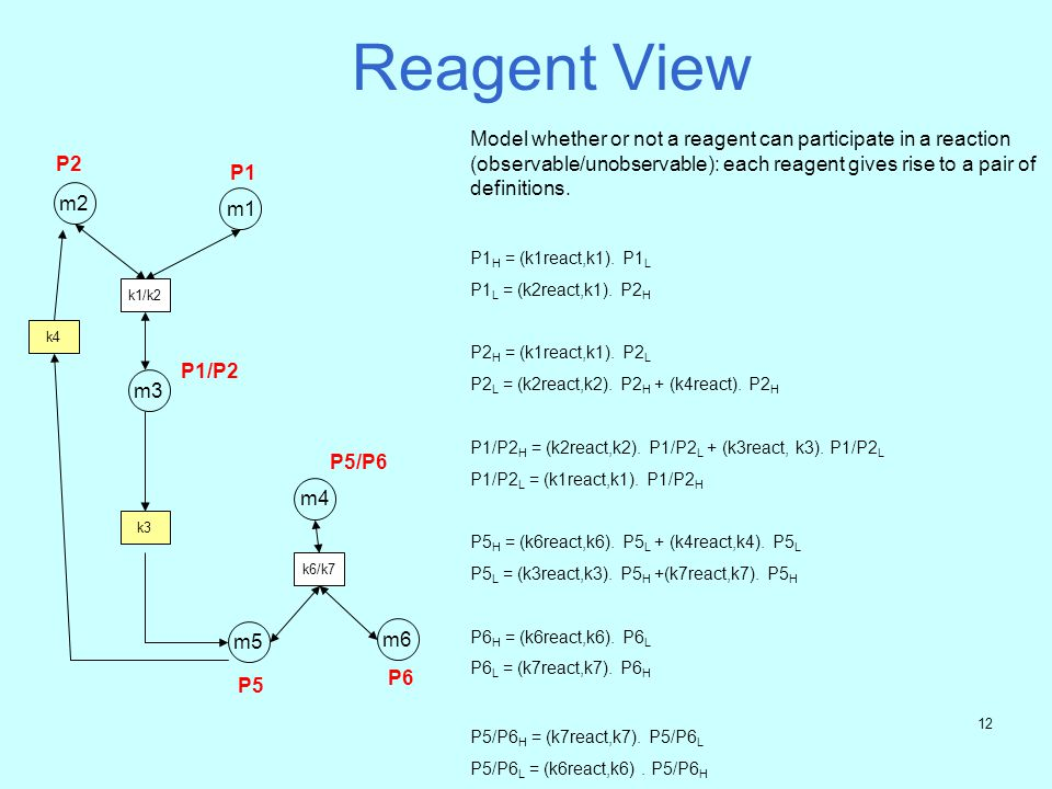 11 Signalling Dynamics m1 P1 m2 P2 k1/k2 m5 P5 K6/k7 m6 P6 m4 P5/P6 Reaction Producer(s) Consumer(s) k1react {P2,P1} {P1/P2} k2react {P1/P2} {P2,P1} k