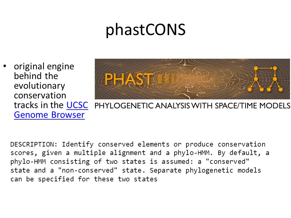 phastCONS original engine behind the evolutionary conservation tracks in the UCSC Genome BrowserUCSC Genome Browser DESCRIPTION: Identify conserved elements or produce conservation scores, given a multiple alignment and a phylo-HMM.