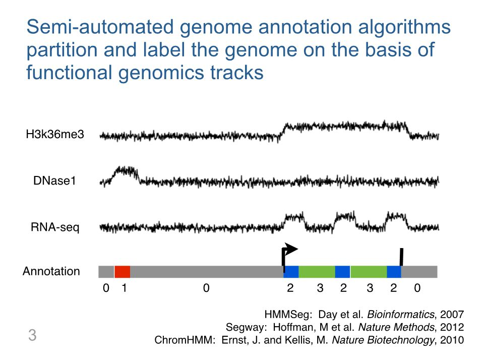 Semi-automated genome annotation