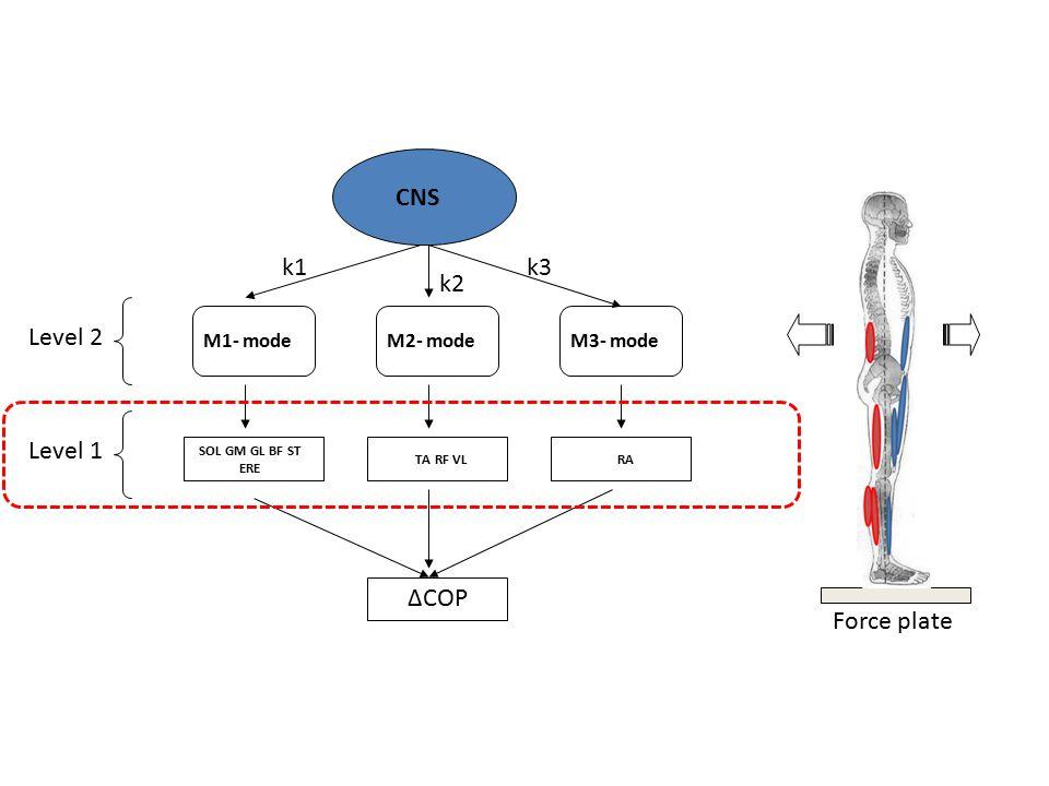 ΔCOP M1- modeM2- modeM3- mode SOL GM GL BF ST ERE TA RF VLRA k1 k2 k3 CNS Level 1 Level 2 Force plate