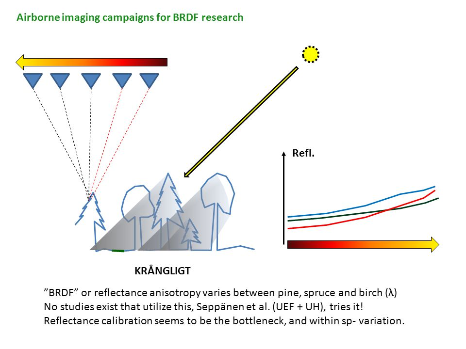 """Airborne imaging campaigns for BRDF research KRÅNGLIGT Refl. """"BRDF"""" or reflectance anisotropy varies between pine, spruce and birch (λ) No studies exi"""