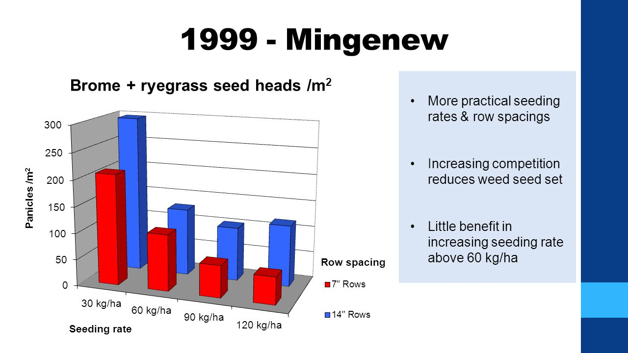 1999 - Mingenew More practical seeding rates & row spacings Increasing competition reduces weed seed set Little benefit in increasing seeding rate abo