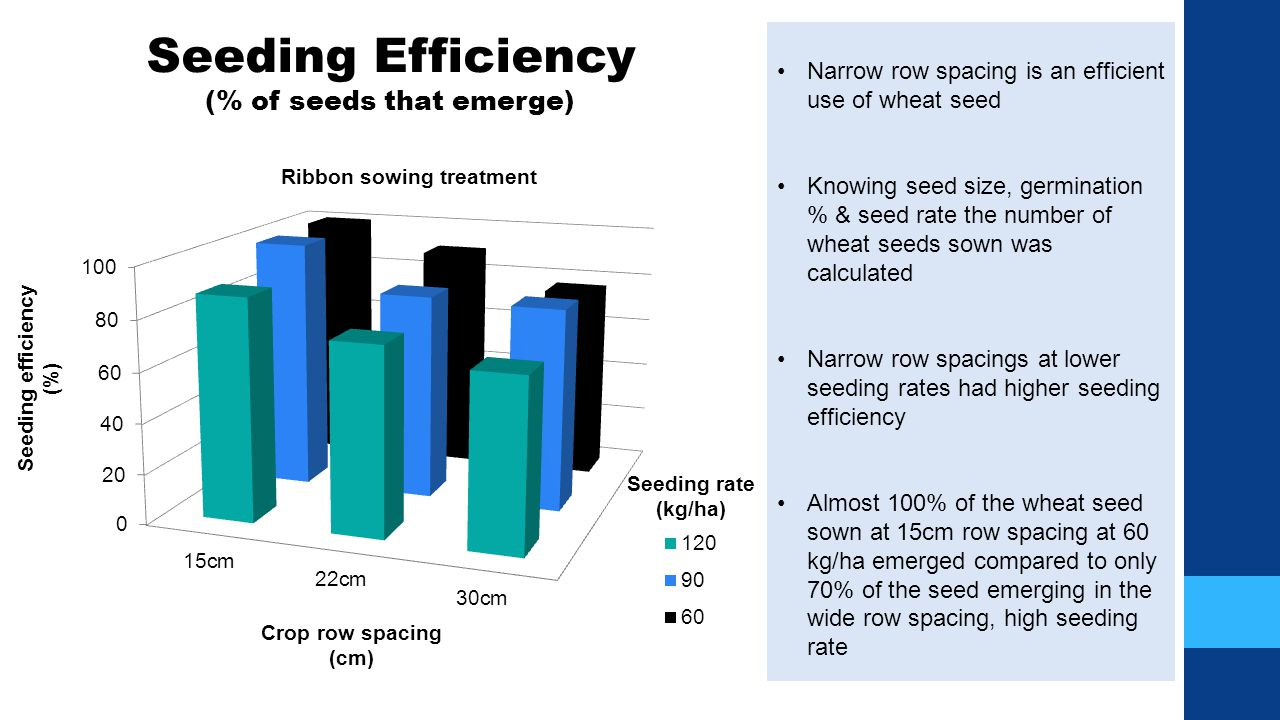 Benefit compared to 12 10 (25cm) 7.5 (19cm) Reduction in row spacing (cm)511 Wheat yield benefit (kg/ha)4088 $/ha benefit$10.80$23.76
