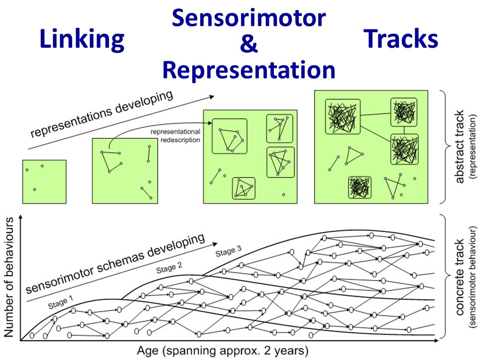Linking Tracks Sensorimotor & Representation
