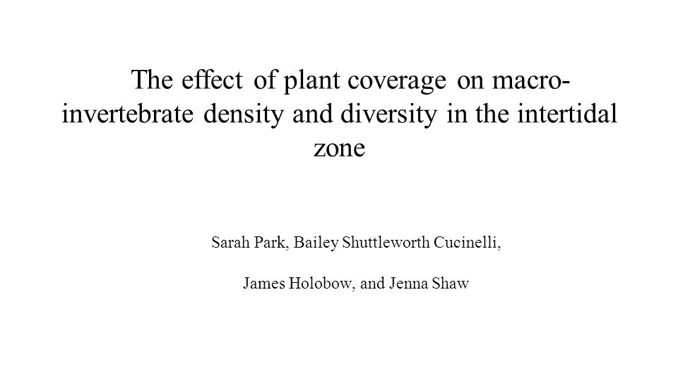 The effect of plant coverage on macro- invertebrate density and diversity in the intertidal zone Sarah Park, Bailey Shuttleworth Cucinelli, James Holo