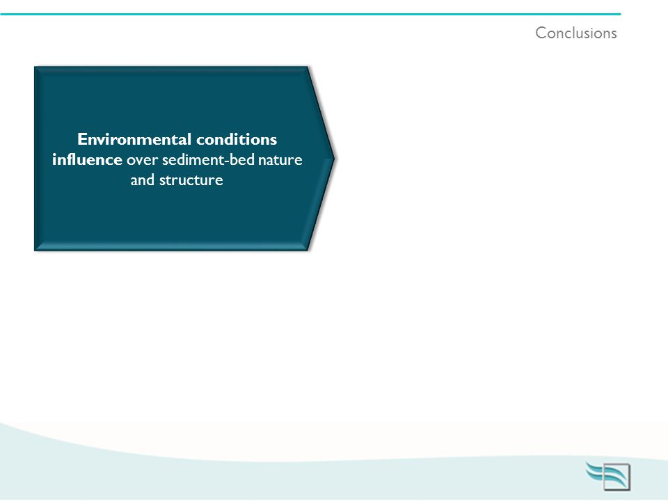 Conclusions Environmental conditions influence over sediment-bed nature and structure