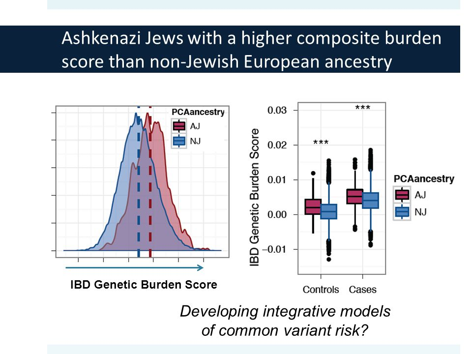 IBD Genetic Burden Score Ashkenazi Jews with a higher composite burden score than non-Jewish European ancestry Developing integrative models of common variant risk