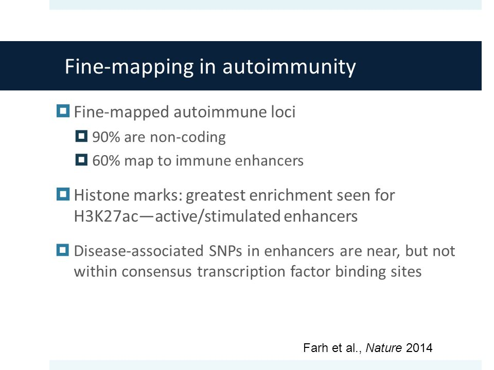 Fine-mapping in autoimmunity  Fine-mapped autoimmune loci  90% are non-coding  60% map to immune enhancers  Histone marks: greatest enrichment seen for H3K27ac—active/stimulated enhancers  Disease-associated SNPs in enhancers are near, but not within consensus transcription factor binding sites Farh et al., Nature 2014