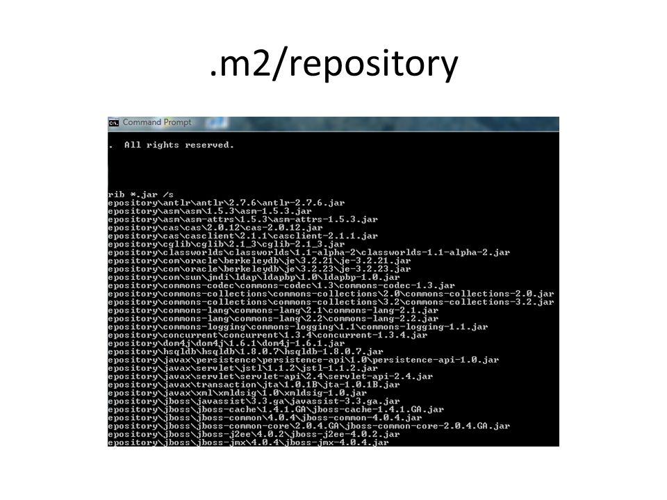 .m2/repository