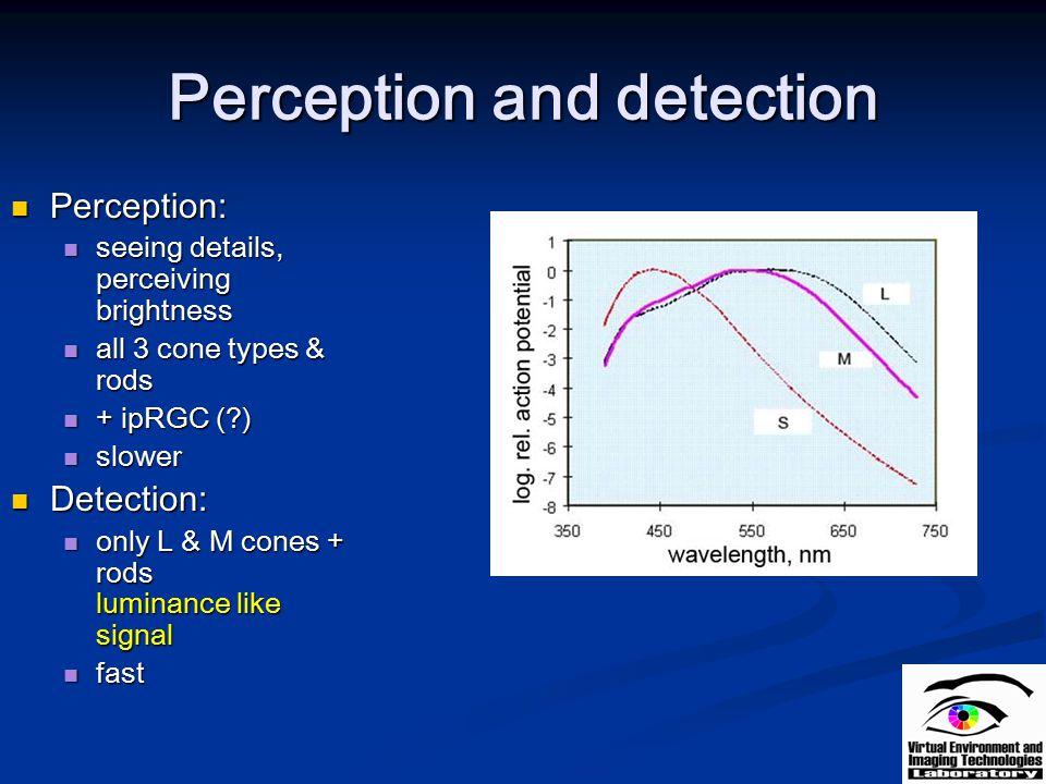 Perception and detection Perception: Perception: seeing details, perceiving brightness seeing details, perceiving brightness all 3 cone types & rods a