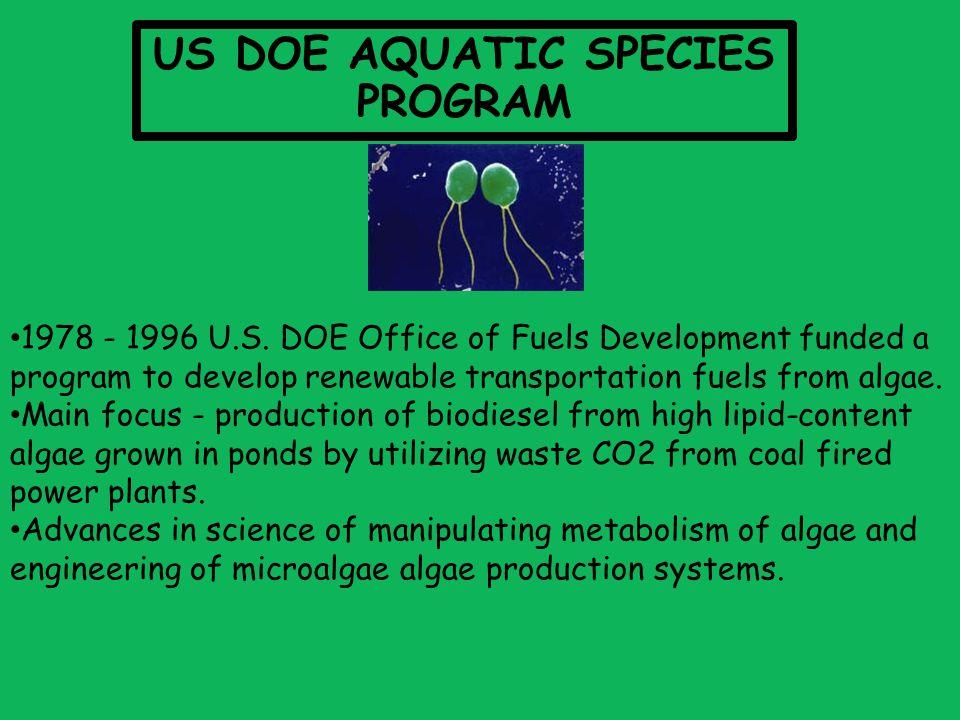 1978 - 1996 U.S.
