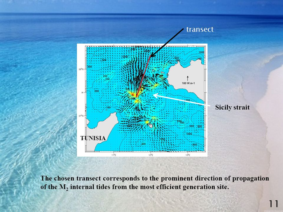 transect 11 The chosen transect corresponds to the prominent direction of propagation of the M 2 internal tides from the most efficient generation site.