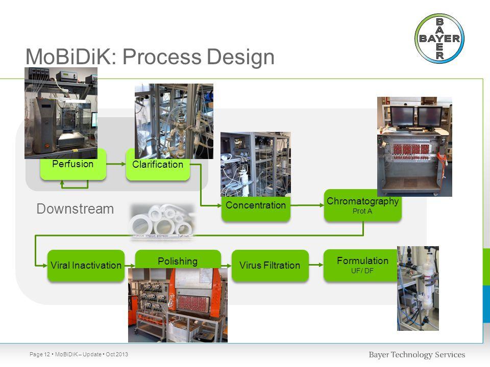 MoBiDiK: Process Design Page 12 MoBiDiK – Update Oct 2013 Chromatography Prot A Chromatography Prot A Viral Inactivation Concentration Formulation UF/