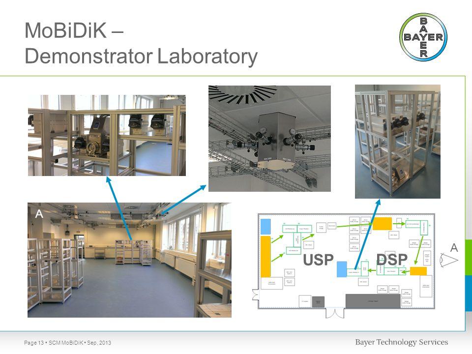 MoBiDiK – Demonstrator Laboratory SCM MoBiDiK Sep, 2013Page 13 A A USP DSP