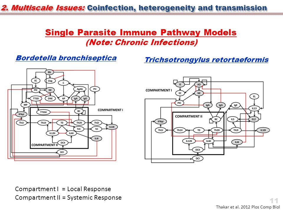 Single Parasite Immune Pathway Models (Note: Chronic Infections) Thakar et al.
