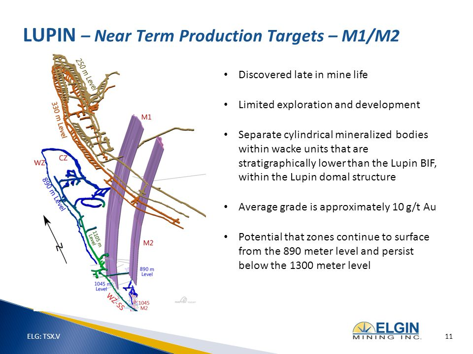 Discovered late in mine life Limited exploration and development Separate cylindrical mineralized bodies within wacke units that are stratigraphically lower than the Lupin BIF, within the Lupin domal structure Average grade is approximately 10 g/t Au Potential that zones continue to surface from the 890 meter level and persist below the 1300 meter level LUPIN – Near Term Production Targets – M1/M2 ELG: TSX.V 11