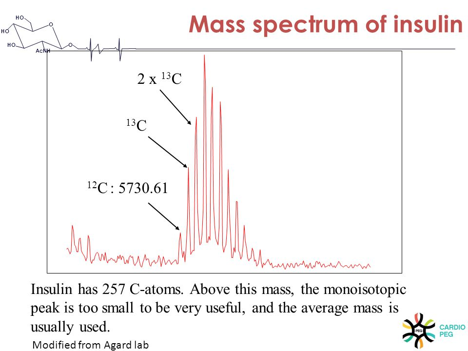 O O HO AcNH Mass spectrum of insulin 12 C : 5730.61 13 C 2 x 13 C Insulin has 257 C-atoms. Above this mass, the monoisotopic peak is too small to be v