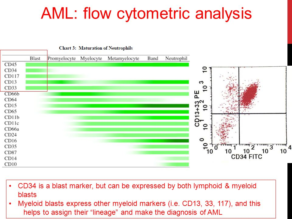 http://www.asco.org/ AML: G-band Karyotyping AML: recurring chromosomal translocations