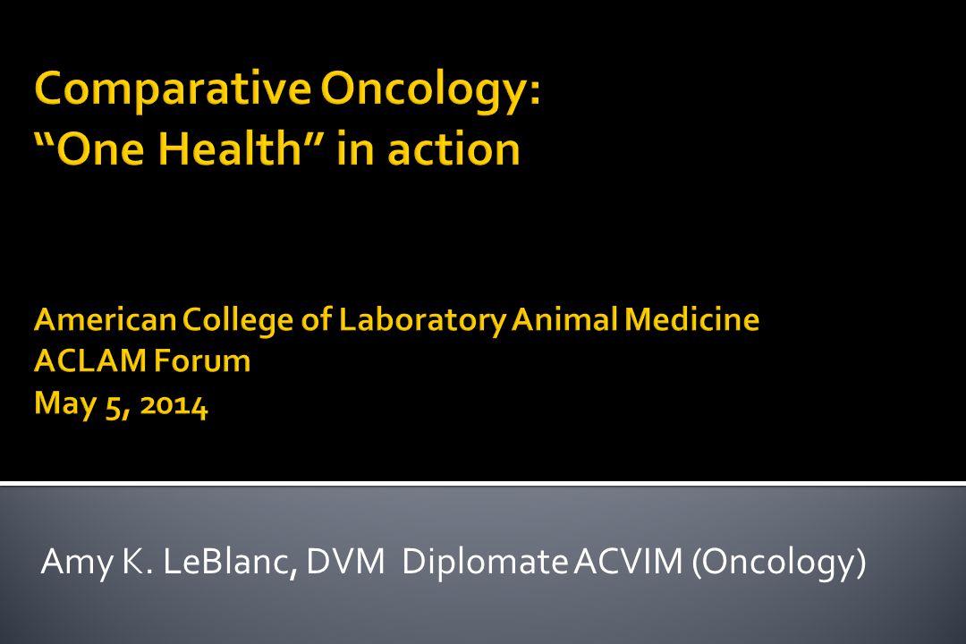 Amy K. LeBlanc, DVM Diplomate ACVIM (Oncology)