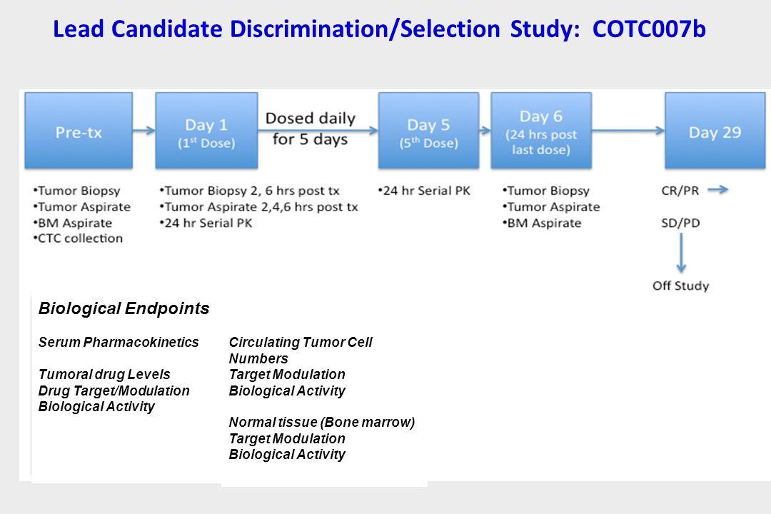 Lead Candidate Discrimination/Selection Study: COTC007b Biological Endpoints Serum Pharmacokinetics Tumoral drug Levels Drug Target/Modulation Biologi