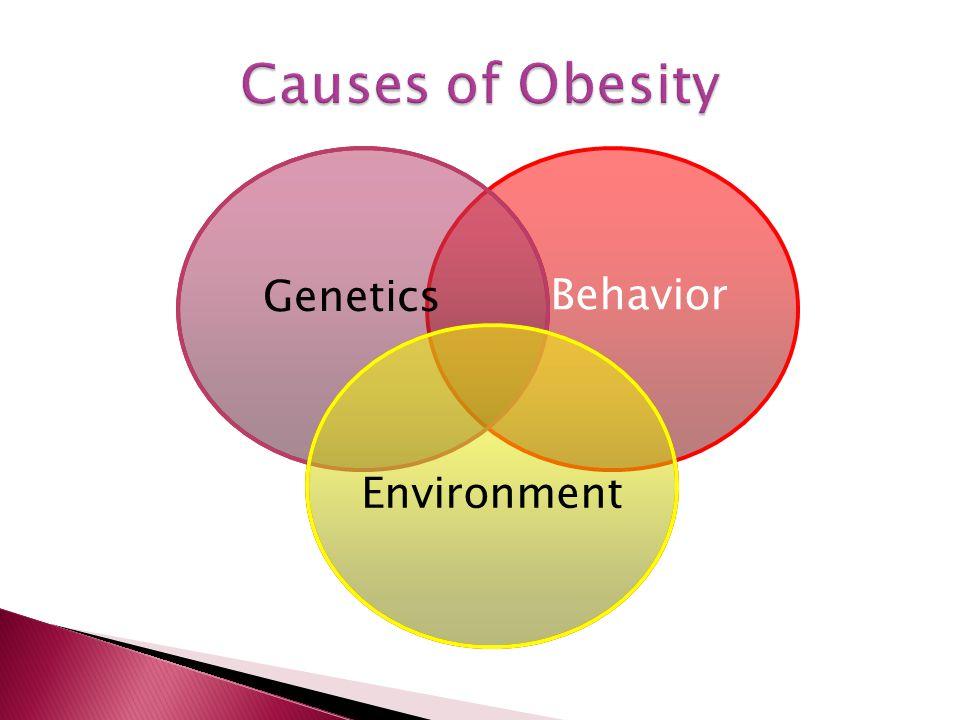 Genetics Behavior Environment
