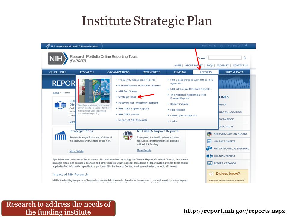 Institute Strategic Plan http://report.nih.gov/reports.aspx Research to address the needs of the funding institute