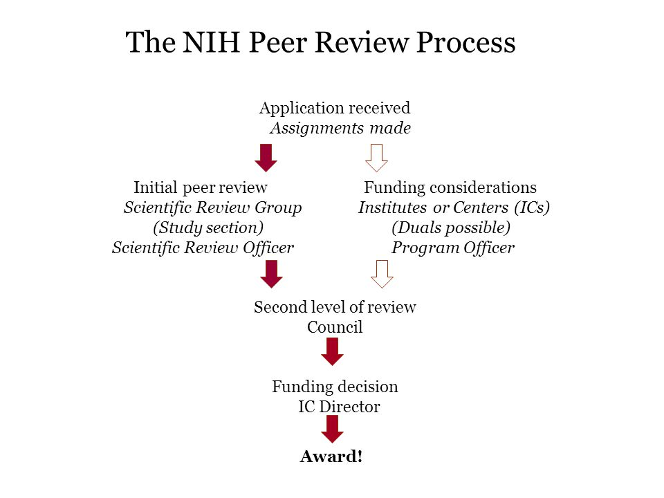 The NIH Peer Review Process Application received Assignments made Initial peer review Funding considerations Scientific Review Group Institutes or Centers (ICs) (Study section) (Duals possible) Scientific Review Officer Program Officer Second level of review Council Funding decision IC Director Award!