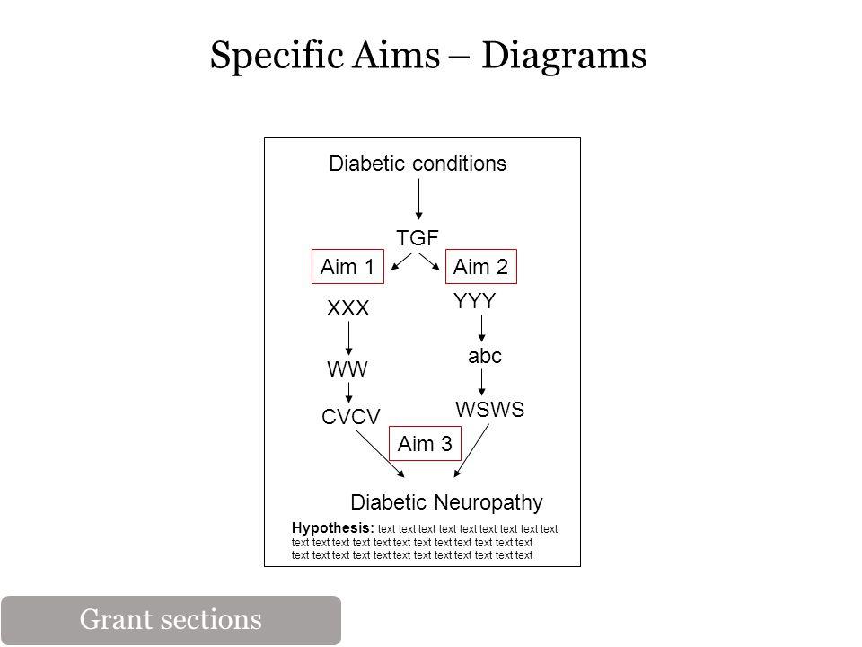 Specific Aims – Diagrams Diabetic conditions TGF XXX YYY WW abc Diabetic Neuropathy CVCV WSWS Hypothesis: text text text text text text text text text text text text text text text Aim 1Aim 2 Aim 3 Grant sections