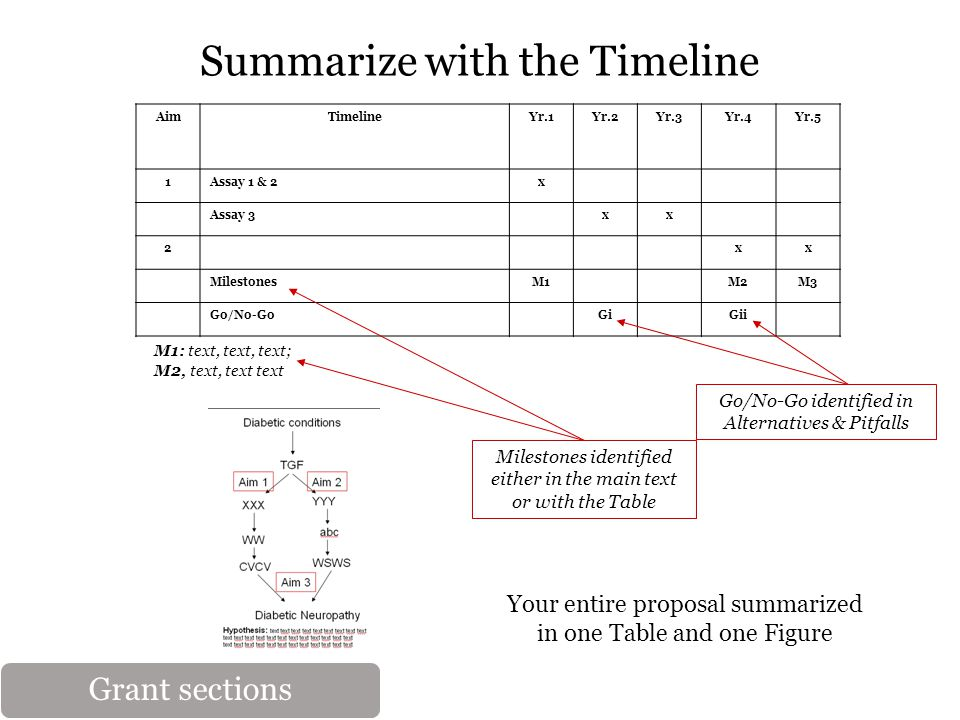 AimTimelineYr.1Yr.2Yr.3Yr.4Yr.5 1Assay 1 & 2x Assay 3xx 2xx MilestonesM1M2M3 Go/No-GoGiGii Summarize with the Timeline Go/No-Go identified in Alternatives & Pitfalls M1: text, text, text; M2, text, text text Milestones identified either in the main text or with the Table Your entire proposal summarized in one Table and one Figure Grant sections