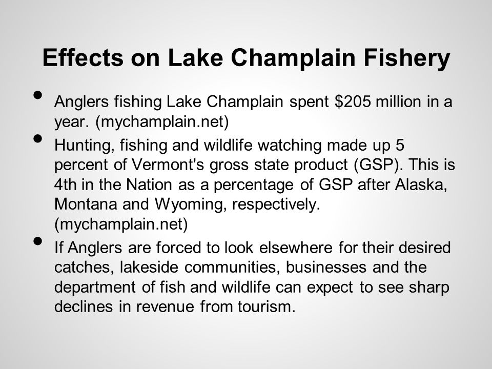 Effects on Lake Champlain Fishery Anglers fishing Lake Champlain spent $205 million in a year.