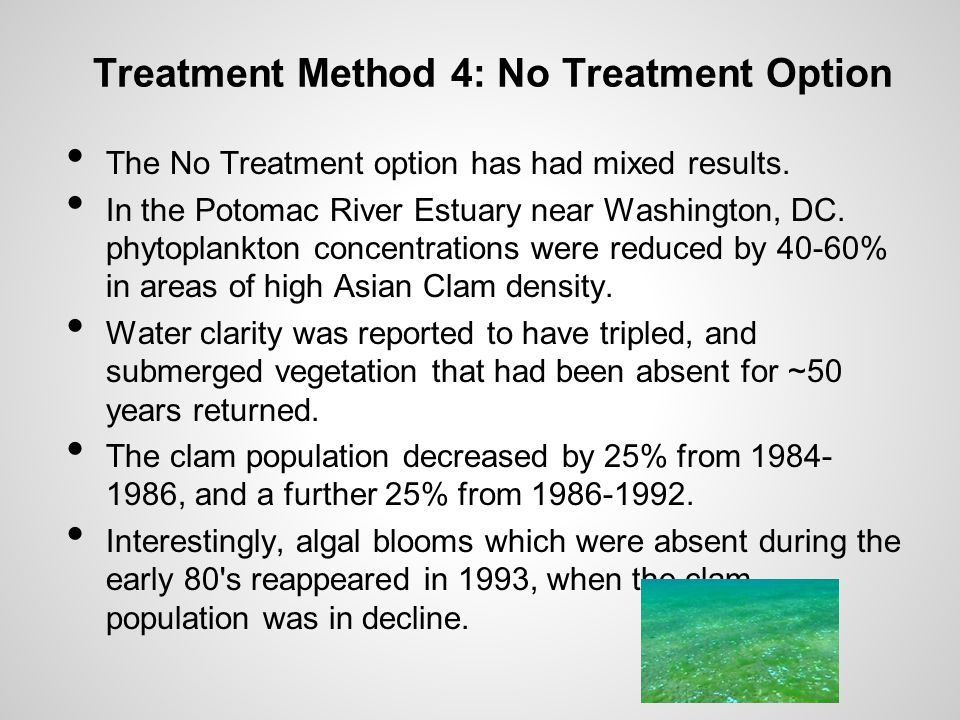 Treatment Method 4: No Treatment Option The No Treatment option has had mixed results.