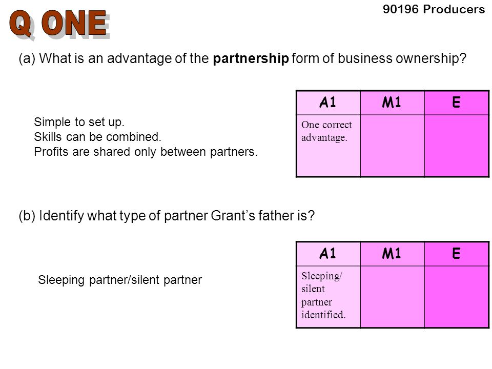90196 Producers (a) What is an advantage of the partnership form of business ownership.