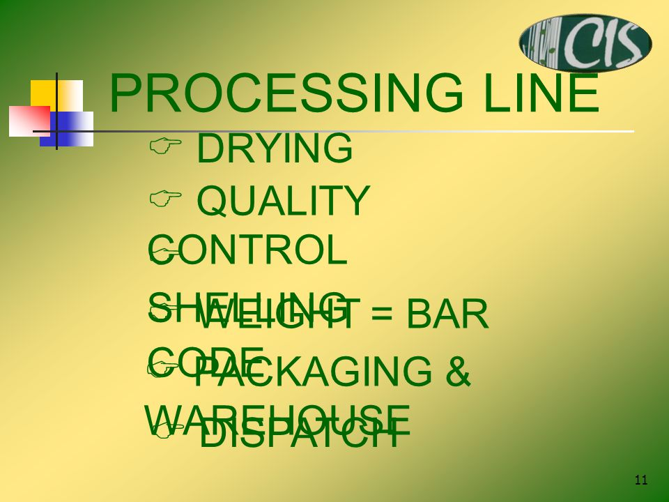 11 PROCESSING LINE  DRYING  QUALITY CONTROL  SHELLING  WEIGHT = BAR CODE  PACKAGING & WAREHOUSE  DISPATCH