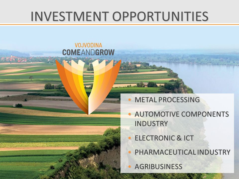 INVESTMENT OPPORTUNITIES METAL PROCESSINGMETAL PROCESSING AUTOMOTIVE COMPONENTS INDUSTRYAUTOMOTIVE COMPONENTS INDUSTRY ELECTRONIC & ICTELECTRONIC & ICT PHARMACEUTICAL INDUSTRYPHARMACEUTICAL INDUSTRY AGRIBUSINESSAGRIBUSINESS