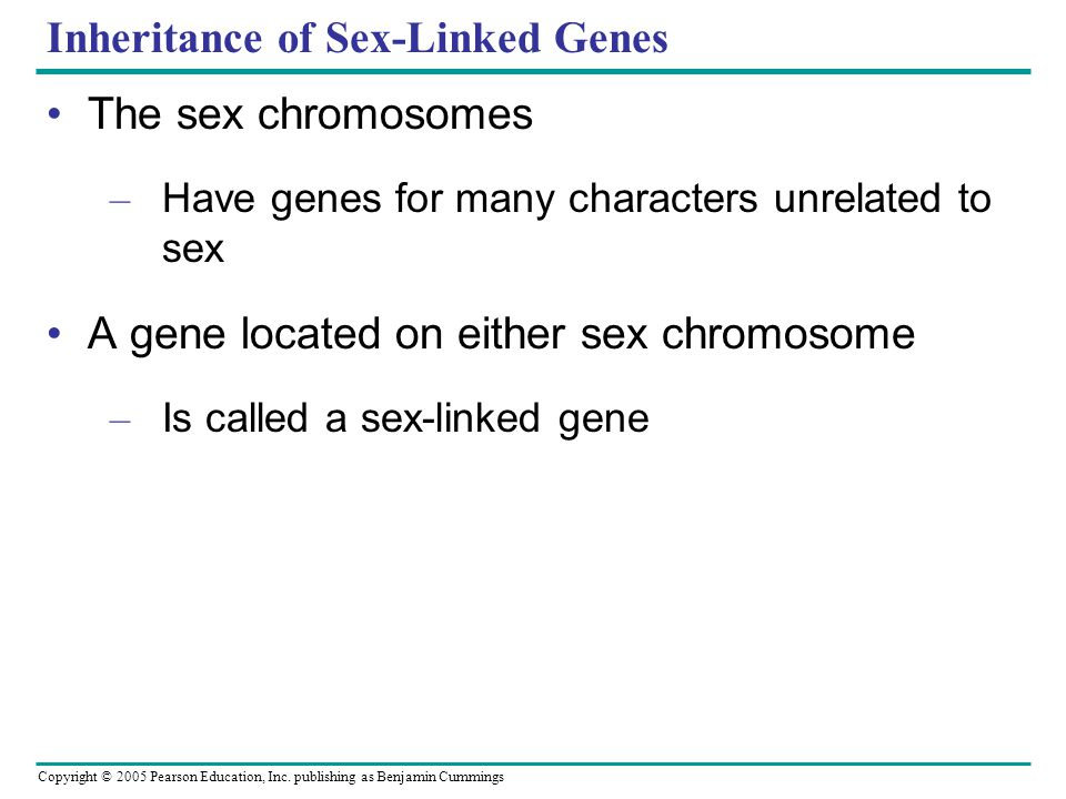 Copyright © 2005 Pearson Education, Inc. publishing as Benjamin Cummings Inheritance of Sex-Linked Genes The sex chromosomes – Have genes for many cha