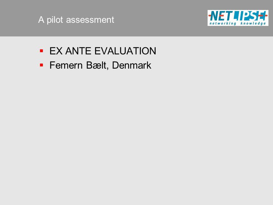 A pilot assessment  EX ANTE EVALUATION  Femern Bælt, Denmark
