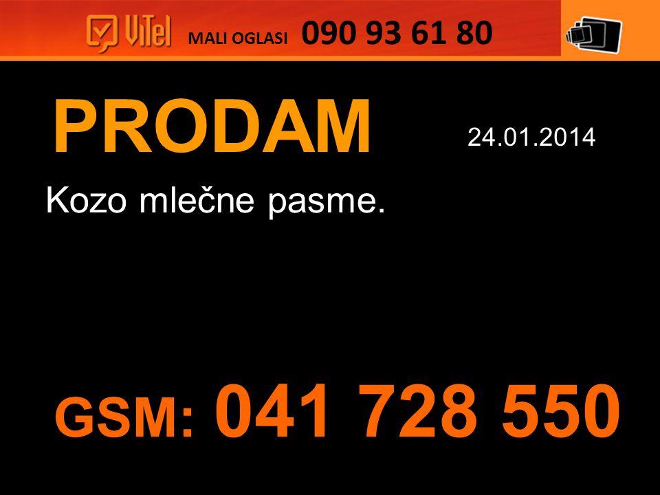 PRODAM Kozo mlečne pasme. MALI OGLASI 090 93 61 80 24.01.2014 GSM: 041 728 550