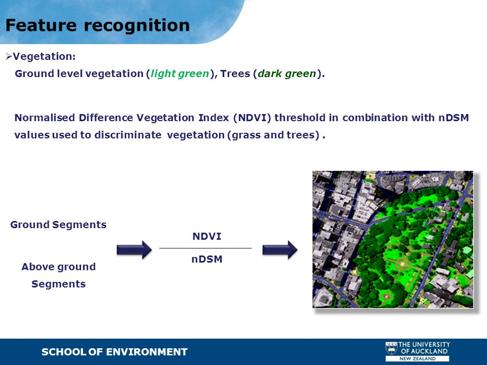 SCHOOL OF ENVIRONMENT · Text Feature recognition  Vegetation: Ground level vegetation (light green), Trees (dark green). NDVI Ground Segments nDSM No