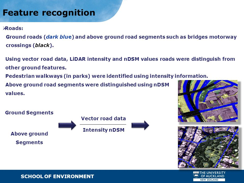 SCHOOL OF ENVIRONMENT · Text Feature recognition  Roads: Ground roads (dark blue) and above ground road segments such as bridges motorway crossings (