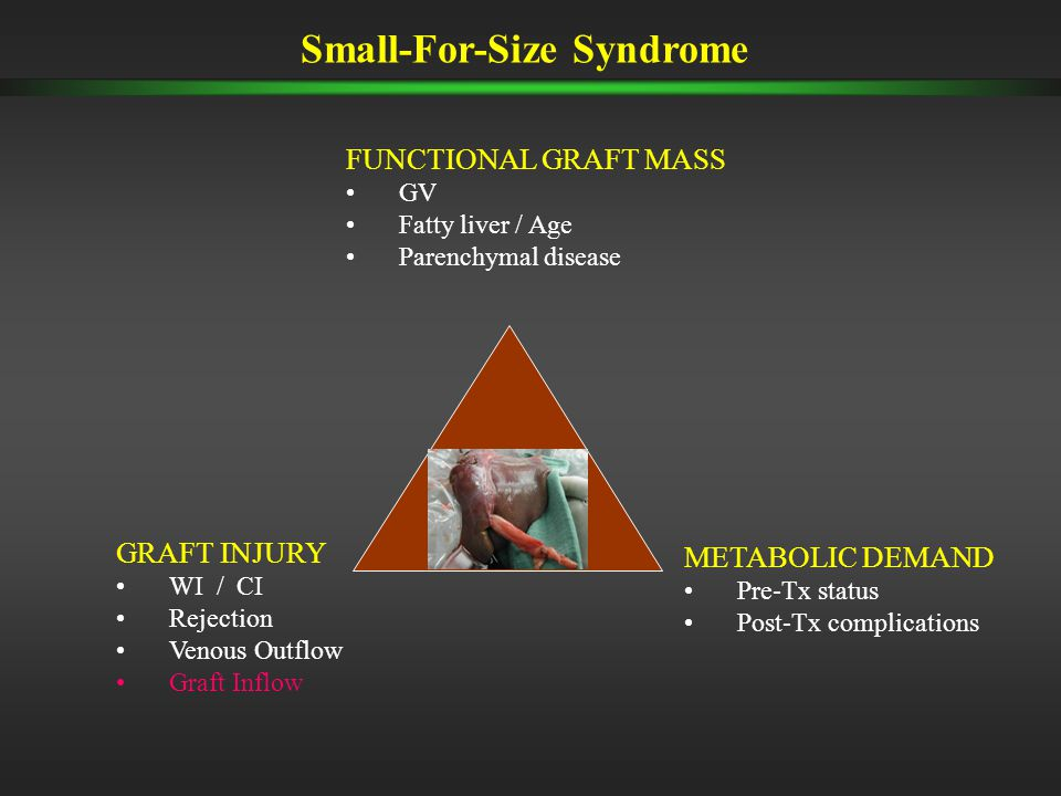 Small-For-Size Syndrome FUNCTIONAL GRAFT MASS GV Fatty liver / Age Parenchymal disease GRAFT INJURY WI / CI Rejection Venous Outflow Graft Inflow METABOLIC DEMAND Pre-Tx status Post-Tx complications
