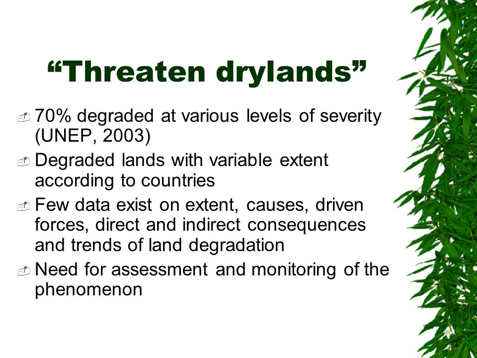 Threaten drylands  70% degraded at various levels of severity (UNEP, 2003)  Degraded lands with variable extent according to countries  Few data exist on extent, causes, driven forces, direct and indirect consequences and trends of land degradation  Need for assessment and monitoring of the phenomenon