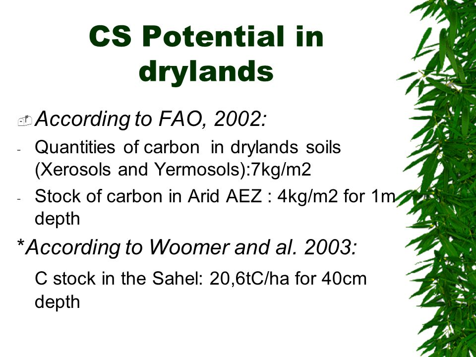CS Potential in drylands  According to FAO, 2002: - Quantities of carbon in drylands soils (Xerosols and Yermosols):7kg/m2 - Stock of carbon in Arid AEZ : 4kg/m2 for 1m depth *According to Woomer and al.